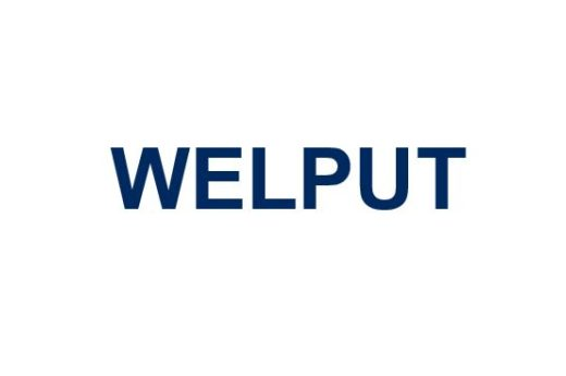 WELPUT wins at IPD European Investment Awards